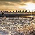 Snowy Sunrise by Lori Coleman