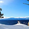 Snowy Tahoe by Sean McGuire