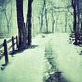 Snowy Wooded Path by Jill Battaglia