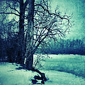 Snowy Woods By A Lake by Jill Battaglia