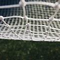 Soccer Net by Paul Edmondson