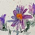 Soft Asters by Beverley Harper Tinsley