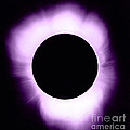 Solar Eclipse by Science Source