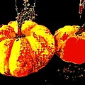 Sonic Pumpkins by Renate Nadi Wesley