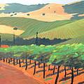 Sonoma Vinyard by Gary Coleman