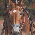 Sorrel Mule by Alecia Underhill