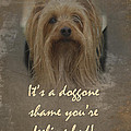 Sorry You're Sick Greeting Card - Cute Doggie by Mother Nature