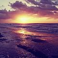 South Carolina Sunrise by Phil Perkins