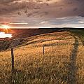 South Saskatchewan River Near Leader by Darwin Wiggett