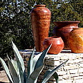 South Western Pottery And Cactus by Terry Fleckney