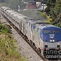 Southbound Amtrak Silver Star by John Black