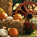 Southern Harvestime Display by Kathy Clark