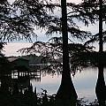 Southern Lake by Nina Fosdick