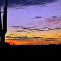 Southwestern Style Sunrise  by Saija  Lehtonen