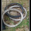 Spare Tires by Debbie Portwood