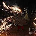 Sparkling Dragon by Agusti Pardo Rossello