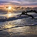Sparkly Water At Driftwood Beach by Debra and Dave Vanderlaan