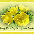 Special Friend Birthday Greeting Card - Yellow Primrose by Mother Nature