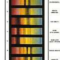 Spectra Chart, Blood Samples, 1894 by Science Source