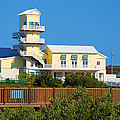 Spi Birding Center From The Boardwalk by Roena King
