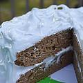 Spice Cake by Bonnie Myszka