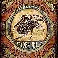 Spider Milk by Nada Meeks