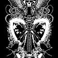 Spine Of Mine by Tony Koehl