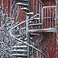 Spiral Staircase With Snow And Cooper's Hawk by Ronald Grogan