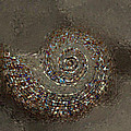 Spiral Textures by Linda Sannuti