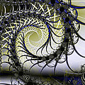 Spiral Web by Frederic Durville