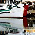 Splendour by Bob Christopher