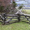 Split Rail Fence by Tim Mulina