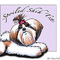 Spoiled Shih Tzu by Catia Lee