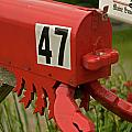 Sponge Bob's Mail Box  by Paul Mangold