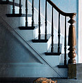 Spooked Cat By Stairs by Jill Battaglia