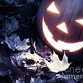 Spooky Jack-o-lantern On Fallen Leaves by Oleksiy Maksymenko