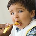 Spoon-feeding by Ian Boddy