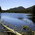 Sprague Lake Rocky Mountain National Park by Gary Batha