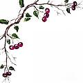 Spray Of Cherries by Pati Pelz