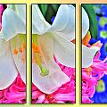 Spring Again Triptych Series by Michael Frank Jr