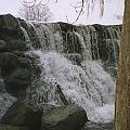 Spring Falls by Annella Grayce