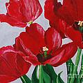 Spring Flirt by Anita Wood