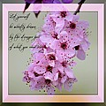 Spring Flowering Tree Inspirational Rumi Floral by P S