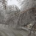 Spring Ice Storm by Gord Patterson