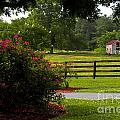 Spring Ranch by Scott Hervieux