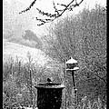 Spring Snowstorm 2012 by Susanne Still