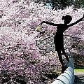 Spring Spirit 2 by Norman Price
