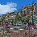 Spring Tulips Downtown Georgetown by Randall Branham