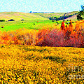 Springtime In The Golden Hills . 7d12402 by Wingsdomain Art and Photography