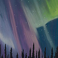 Spruce Silhouette by Jackie Novak